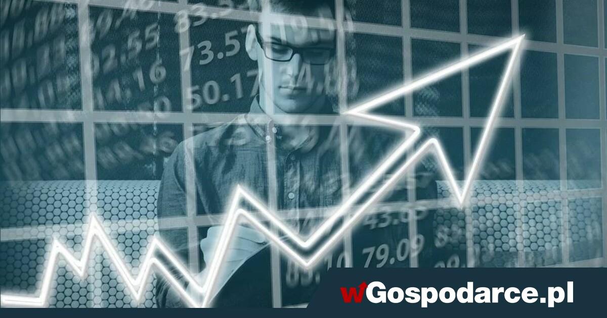 Najnowsza projekcja inflacji oraz PKB powinna mieć bardzo ważne znaczenie dla perspektyw polskiej polityki pieniężnej - wGospodarce.pl